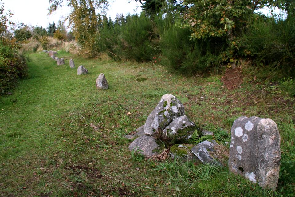 Захоронение железного века посреди каменного ряда Мурхой /Myrhøj, Дания