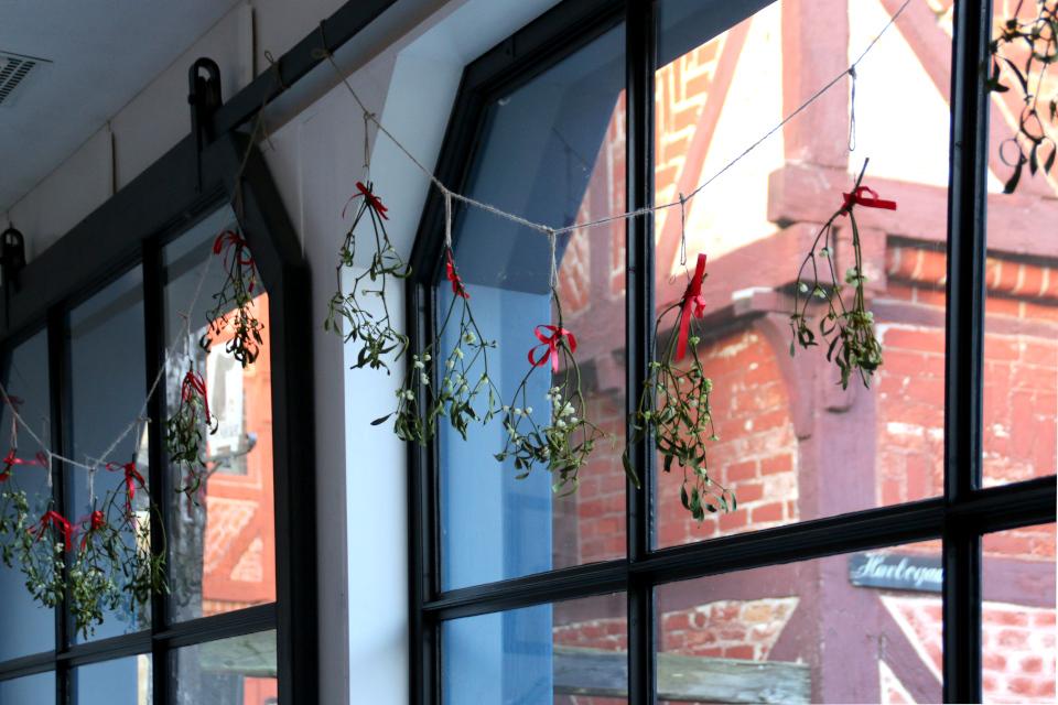 Окна перед Рождеством украшены веточками омелы