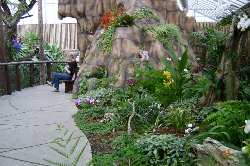 Тропическая оранжерея в парке Йесперхус (Jesperhus Feriepark)