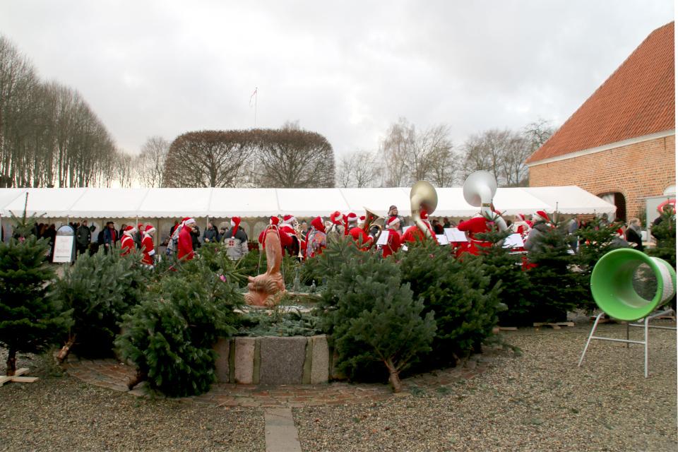 Датские елки в центре двора замка Ульструп, Дания